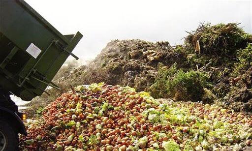 ۳۵ درصد محصولات کشاورزی تبدیل به ضایعات میشود/ لزوم حمایت دولت از کشاورزان
