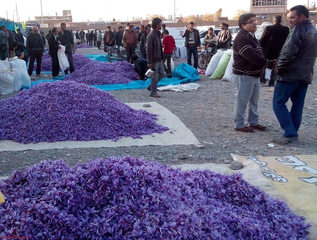 توپ کمکاری خرید زعفران در زمین دولتمردان یا بخش خصوصی