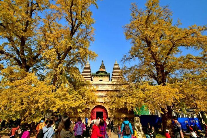 پاییز در چین 4