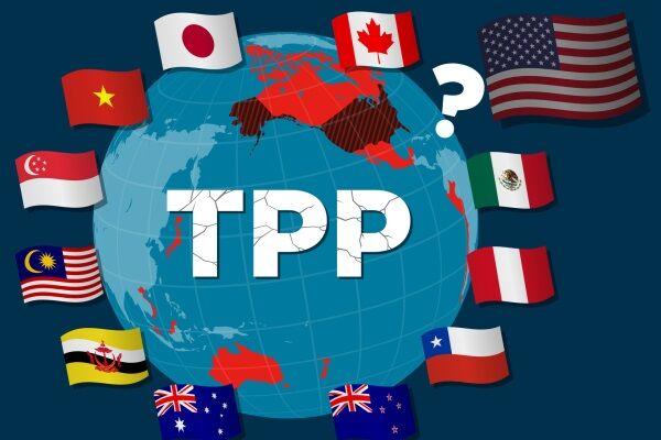 «چندجانبه گرایی تجاری»؛ دستور کار بایدن/ پیمان تجارت آزاد با آسیا احیا میشود؟