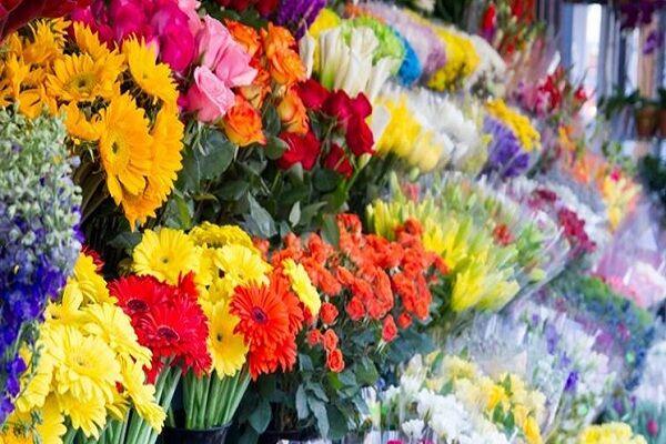 بوی حسرت در گلفروشیهای لرستان؛ بازار گل فروشان پژمرده شد
