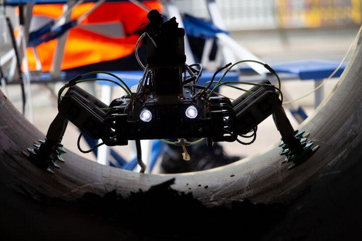 ربات بازرسی 6