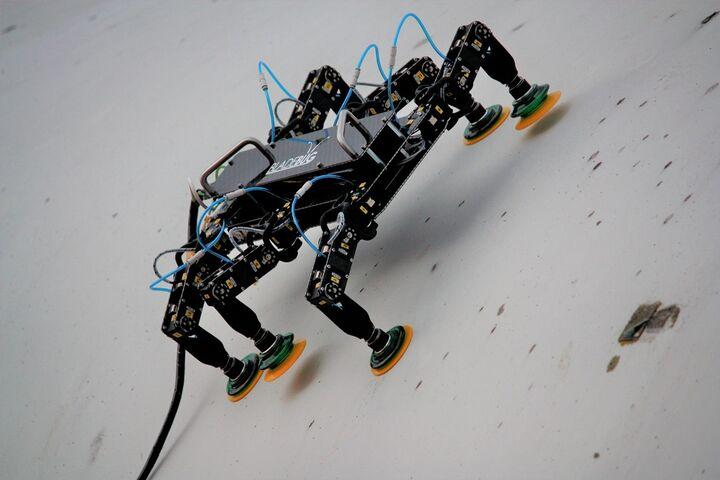 ربات بازرسی 7