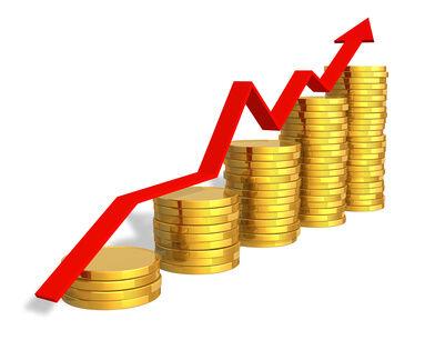میزان سرمایه گذاری صنعتی در سیرجان یک هزار و ۷۴۰ درصد افزایش یافت