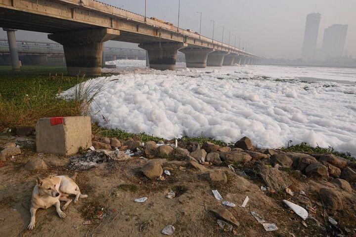 آلودگی رودخانه 2