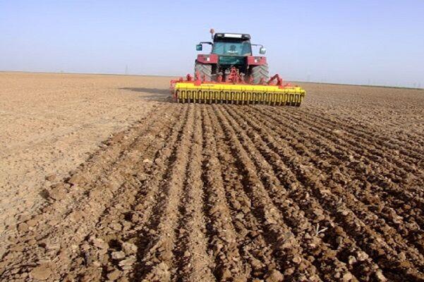امسال ۶ میلیون هکتار از زمینهای زراعی گندم کشت میشود