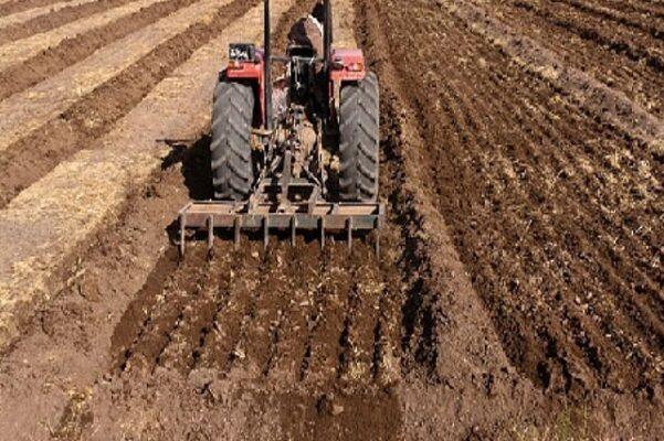 ۴۰ مزرعه تحقیقی و ترویجی دیم در کشور ایجاد شد