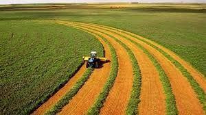 پیش بینی افزایش صادرات محصولات کشاورزی امریکا در سال ۲۰۲۱