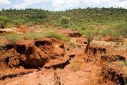 فرسایش خاک ۱۲۵ میلیون هکتار از عرصه های طبیعی کشور را تهدید می کند