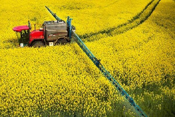 رئیس سازمان جهاد کشاورزی مازندران بر تنظیم بازار مرغ تاکید کرد