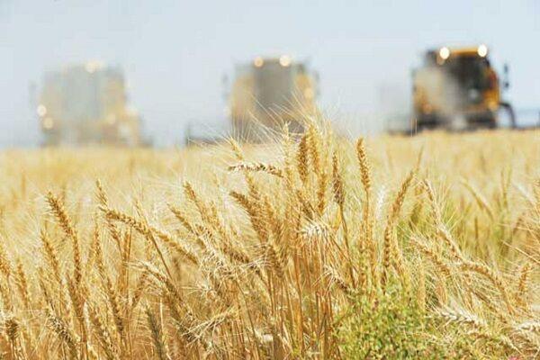 اجرای طرح کشاورزی حفاظتی در ۳۲۰ هزار هکتار از اراضی زراعی آذربایجان غربی