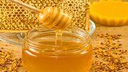 پیش بینی تولید ۷ هزار تن عسل در زنبورستان های کرمانشاه