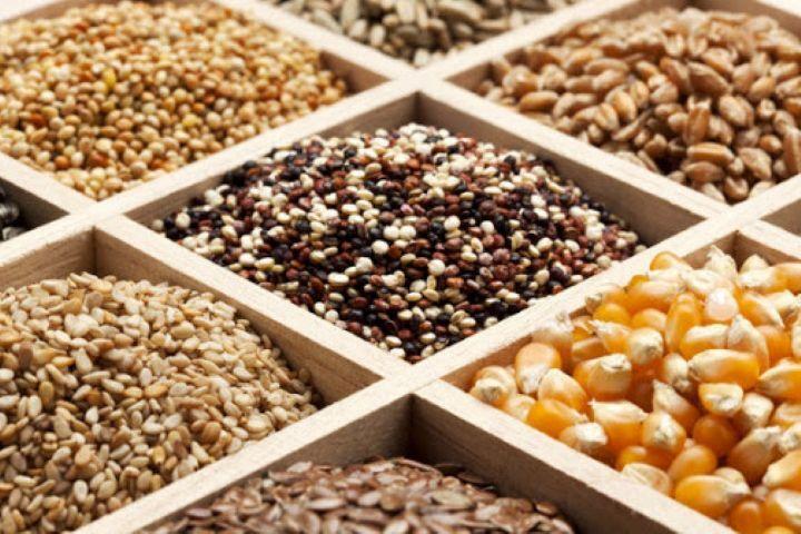 تولید و فرآوری ۱۱ هزار تن انواع بذر توسط اتحادیه تعاون روستایی همدان