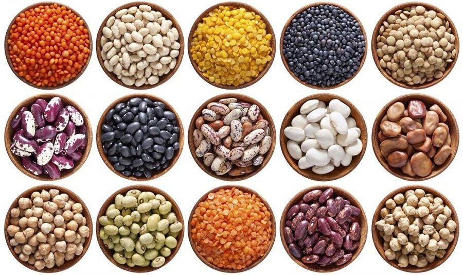 برآورد افزایش ۲۱ درصدی تولید حبوبات در سال زراعی جاری