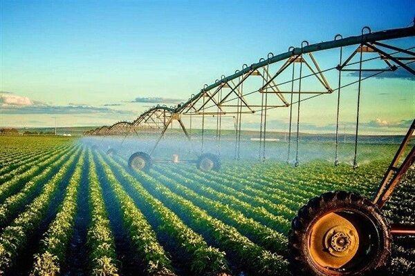 ۵ پروانه کاربرد نشان حد مجاز آلایندهها برای محصولات کشاورزی در ایلام صادر شد