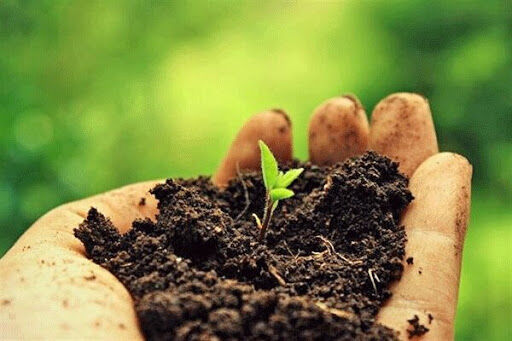 چالشهای کشاورزی قراردادی و مالیات بر ارزش افزوده