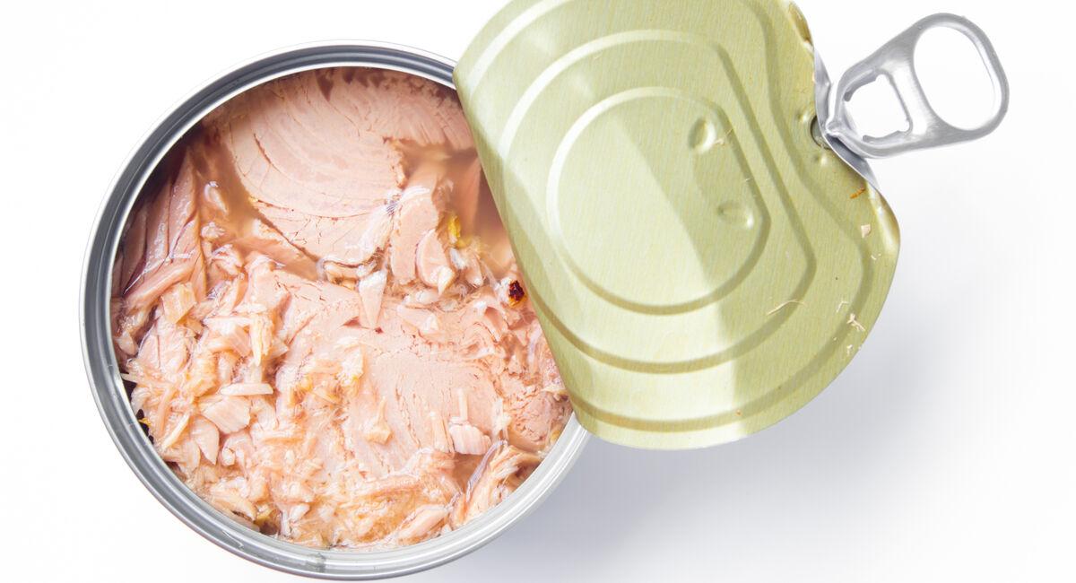 صادرات ۴۰درصدی کنسرو تن ماهی ایران| عوارض واردات کنسرو تن ماهی در خاورمیانه کمتر از دیگر مناطق دنیا است