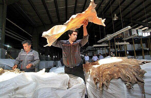 قصه پُرغصه چرم همدان  از فراموشی زنجیره تولید تا بازاری که به دست چینیها افتاد