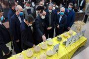 ۱۸ دستاورد تحقیقاتی کشاورزی در آذربایجان غربی رونمایی شد