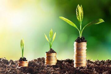 افزایش شمار متقاضیان سرمایه گذاری در شهرستان اسدآباد