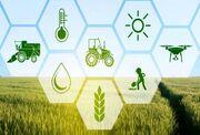 کشاورزی خراسان جنوبی سربلند در حصار چالش ها؛ ۱۵۷ پروژه افتتاح می شود