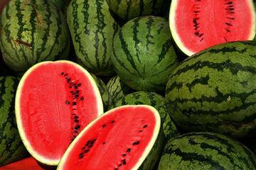 ایران در جایگاه چهارم بحران آب و سومین تولیدکننده بزرگ هندوانه!