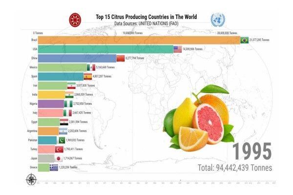 چین، برترین تولیدکننده مرکبات در جهان