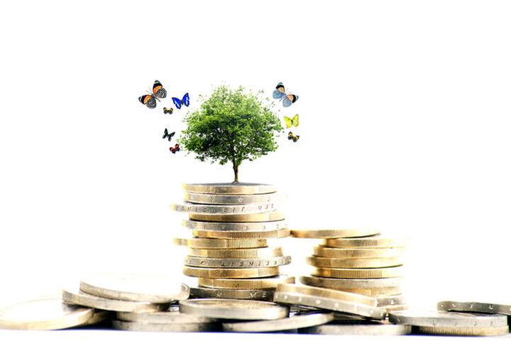 صندوق های سرمایه گذاری با دارایی پایه محصولات کشاورزی مجوز گرفتند