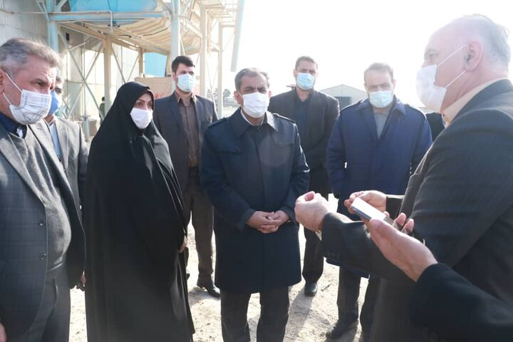استاندار قزوین از مجتمع گوشت زیاران در آبیک بازدید کرد