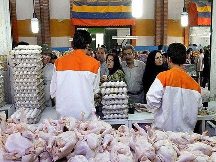 خط ونشان مرغ برای بازار؛ از کمبود تا گرانی لحظه ای