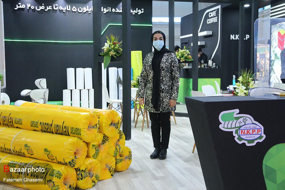 سازگاری با شرایط و کاهش دامنه سود؛ رمز ماندگاری در بازارهای جهانی| عدم حمایت دولت از صنعتگران گلخانه ای