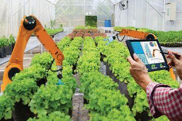 سهم استارت آپهای کشاورزی در بازار کمتر از یک درصد| بسیاری از ابتکارات اصلا استارت آپ نیستند