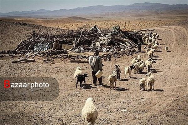 خشکسالی گلوی خراسان جنوبی را می فشارد؛ تشنگی دشت ها و خالی بودن سدها