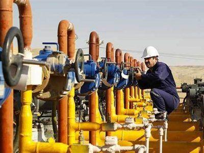 طارم در انتظار گازرسانی؛ طلوع گرمای امید در دومین تولید کننده بزرگ زیتون کشور