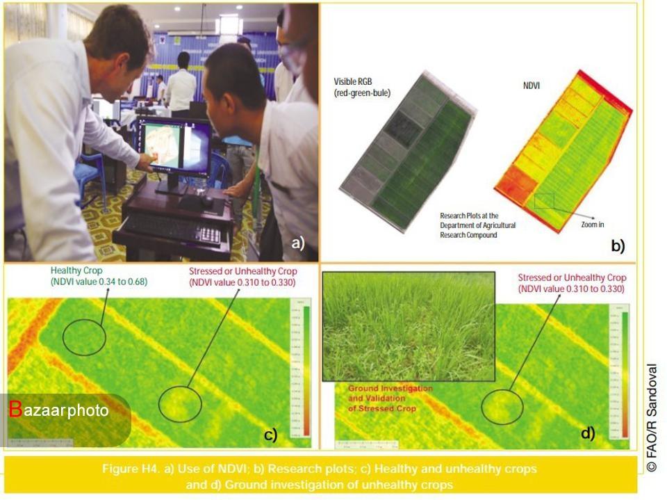 ۱۰ روش بهبود کشاورزی با هوش مصنوعی| ۱۵.۳ میلیارد دلار سرمایه گذاری برای به خدمت گرفتن نیاز است