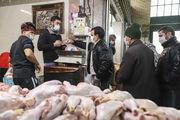 توزیع ۶۱۲ تن مرغ طی هفته آینده در خراسان شمالی