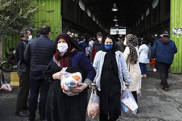 خرید مرغ دولتی با طعم کرونای انگلیسی؛ سرگردانی مردم در روزهای پایانی سال