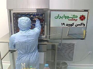 فاز سوم تزریق واکسن کرونا ایرانی برکت به چه تعداد داوطلب تزریق و چگونه بررسی می شود؟