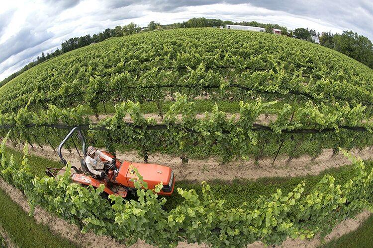 توسعه کشاورزی با توانمندسازی نظامهای بهرهبرداری