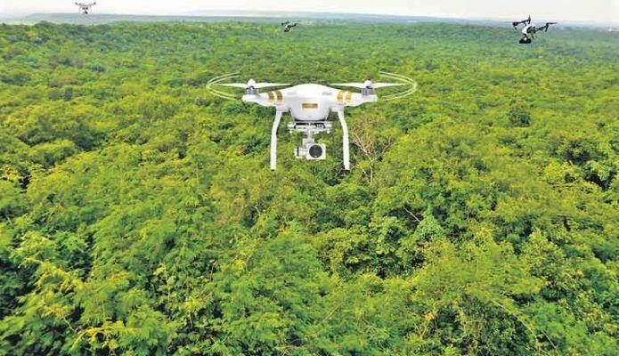 تنفس دوباره زمین با هواپیماهای بدون سرنشین  سالانه بیش از ۷۵ هزار کیلومتر مربع جنگلها نابود می شوند