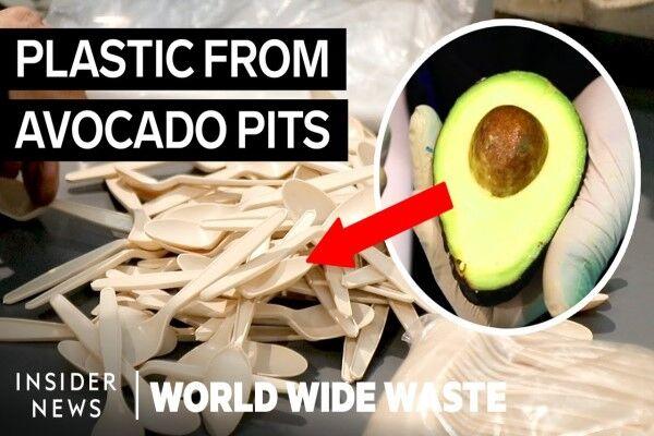 چگونه میتوان از ضایعات آوکادو، پلاستیک تولید کرد؟