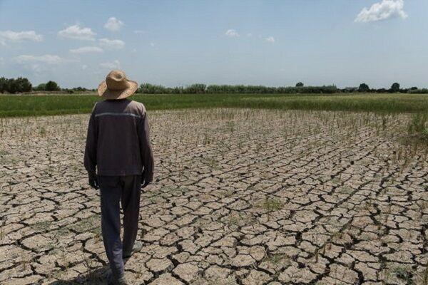 قزوین توان تامین آب کشاورزی را ندارد/ ضرورت پرهیز از کشت تابستانه