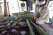 ۲۵ هزار شغل در سیستان و بلوچستان ایجاد میشود