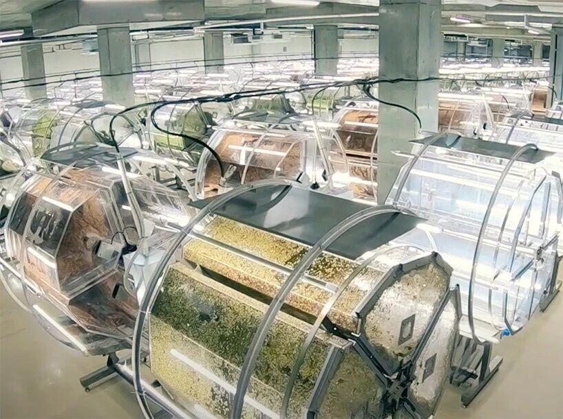 ژاپن بزرگترین مزرعه مبتنی بر «هوش مصنوعی » را راه اندازی کرد