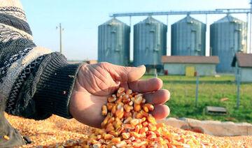 قیمت انواع نهاده های دامی و محصولات کشاورزی ۲۶ خرداد ۱۴۰۰
