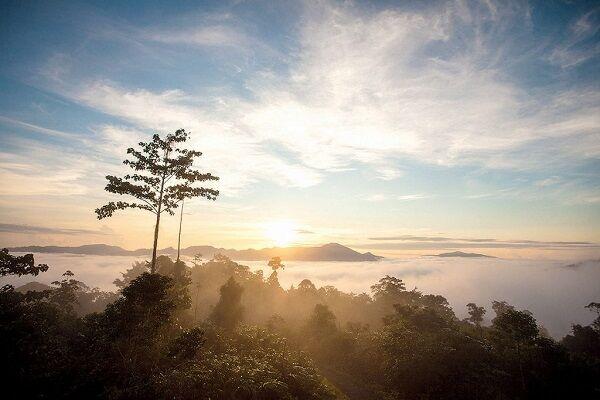 وابستگی آینده اقتصاد جهانی به محیط زیست سالم؛ اولویت «توسعه پایدار» باشد