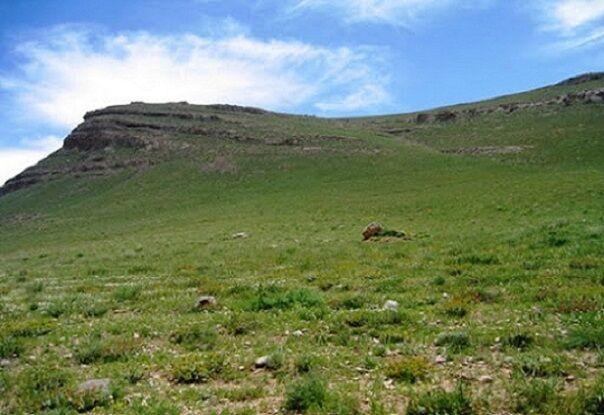 خشکسالی تولید علوفه در مراتع همدان را ۴۲ هزار تن کاهش داد