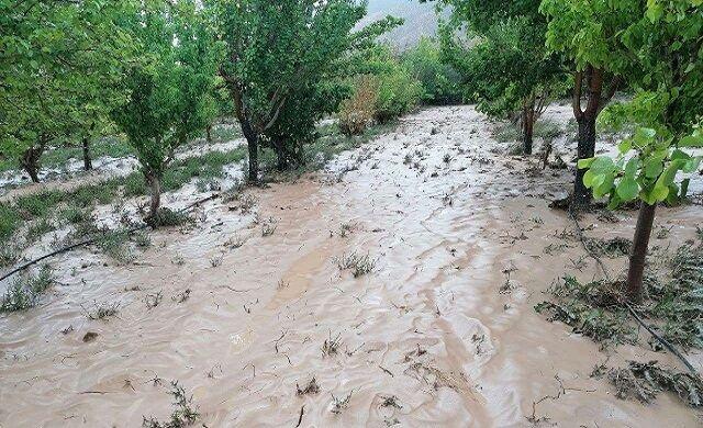 خسارات سیل به روستای تلخه در شهرستان بافت