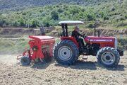خشکه کاری؛ برنجکاری با آب کمتر| تغییر تدریجی الگوی کشت در مازندران