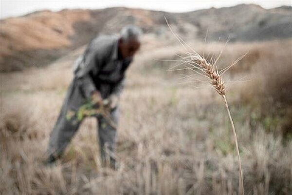 تبعات منفی خشکسالی بر اقتصاد ایران امروز| ضرورت آب برای توسعه سرمایهگذاری و تولید